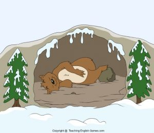 ESL flashcard for children of a bear lying in a cave in winter