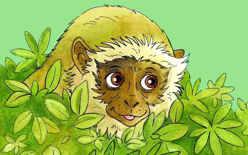cute monkey from one of Shelley's preschool stories